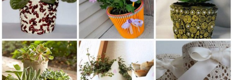 Горшки для цветов: делаем правильный выбор (41 фото)
