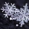Объемные снежинки из бумаги своими руками 2019 на Новый год: интересные идеи, пошаговые инструкции (80 фото)