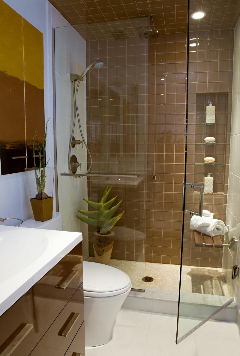 Коричнево-белый дизайн ванной с душевой
