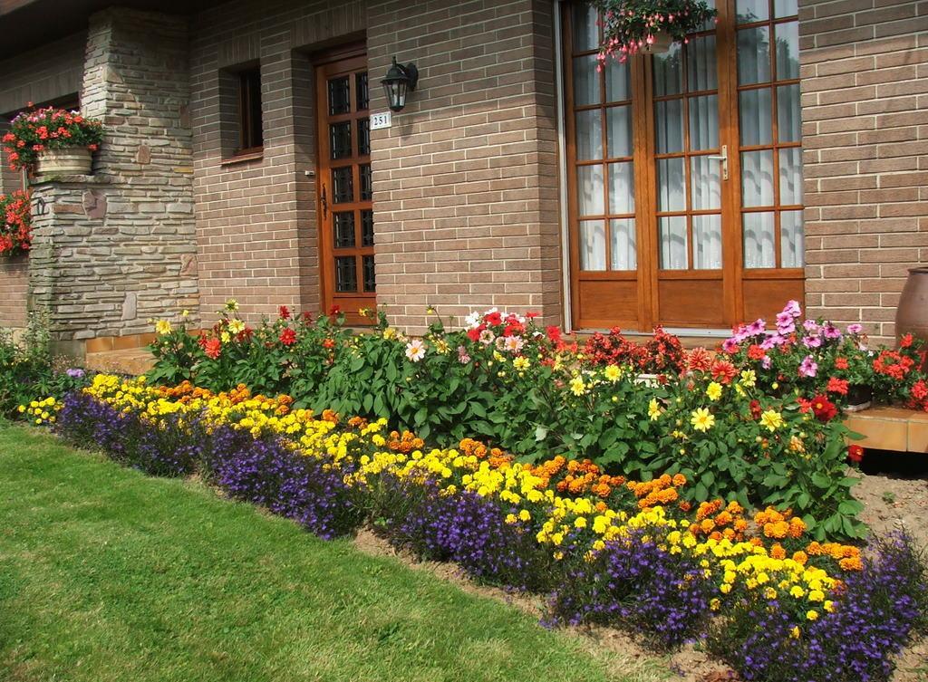 Клумба из многолетних цветов на даче