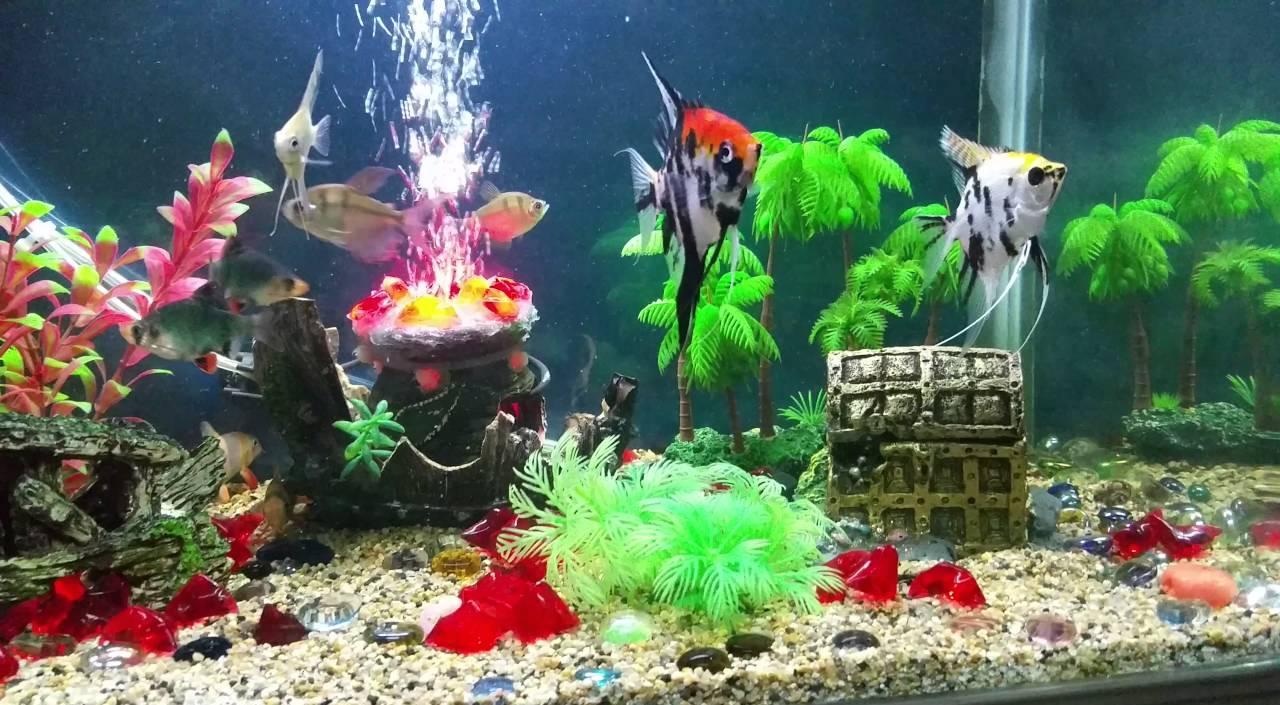 Декор для аквариума пиратский