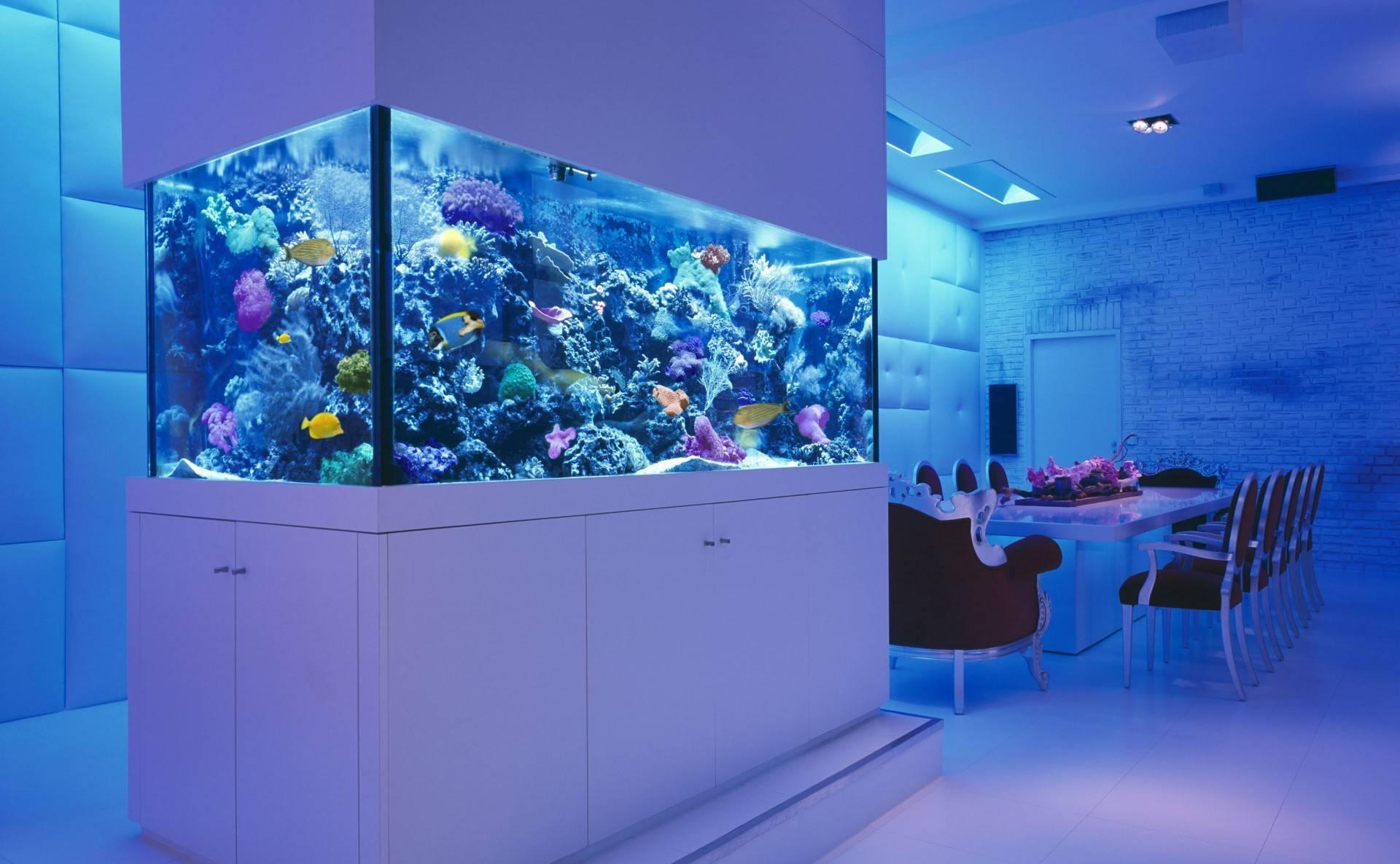 Декор большого аквариума