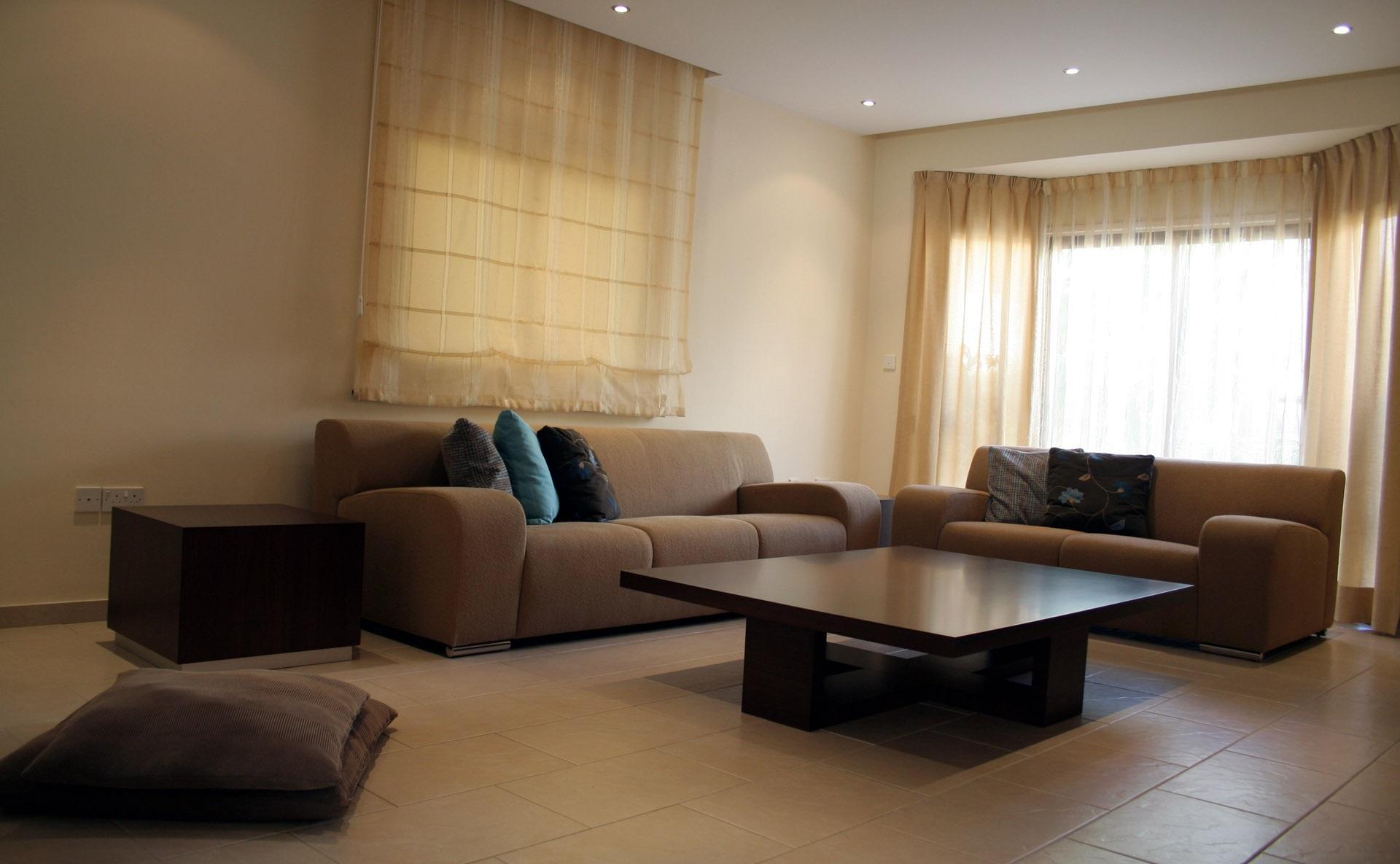 Выкатной коричневый диван