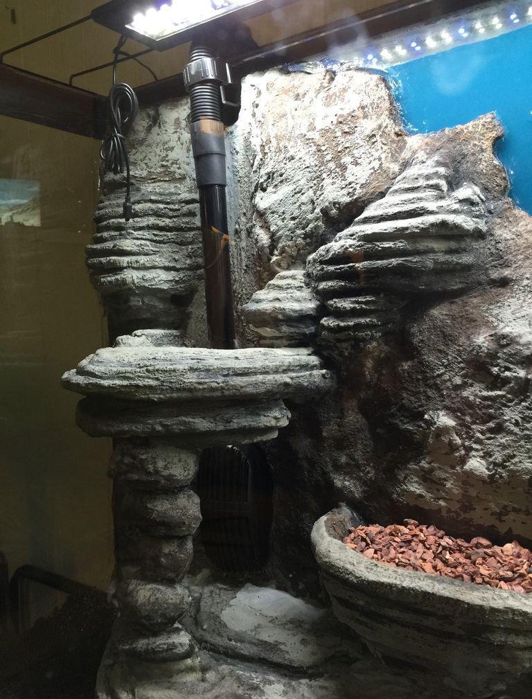 Декор для аквариума фоновый