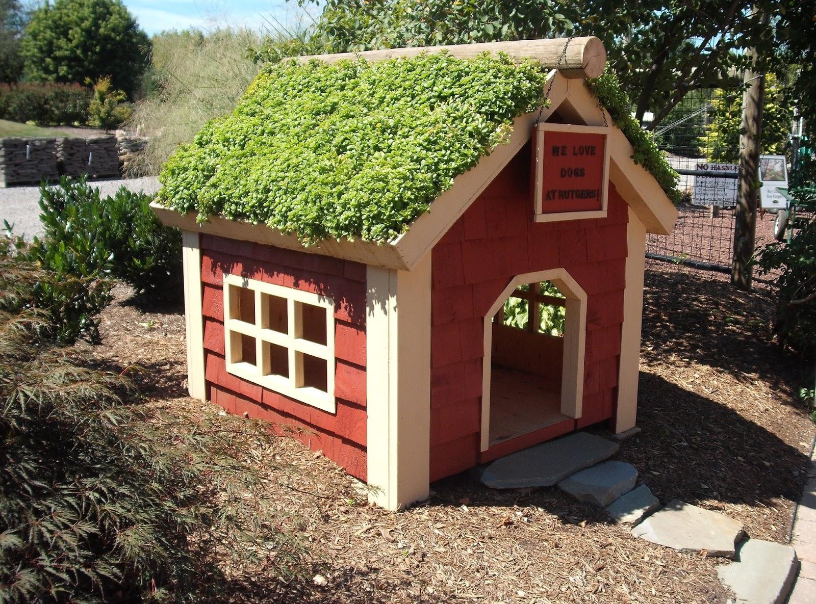 Будка для собаки с растениями