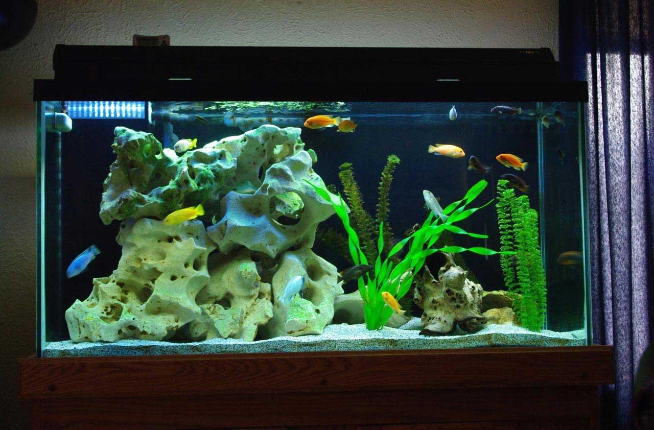 Декор для аквариума глиняный