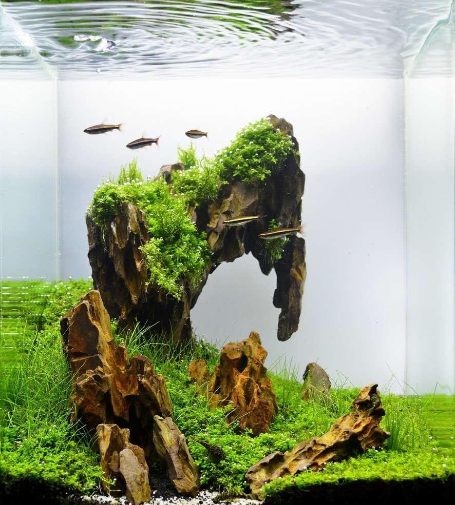 Декор для аквариума каменный