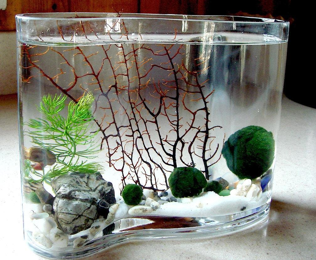 Декор для аквариума в вазе