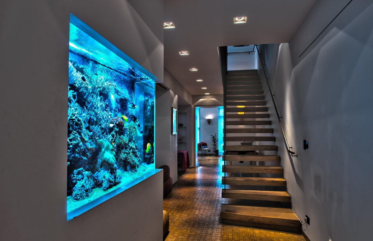 Декор для аквариума большого