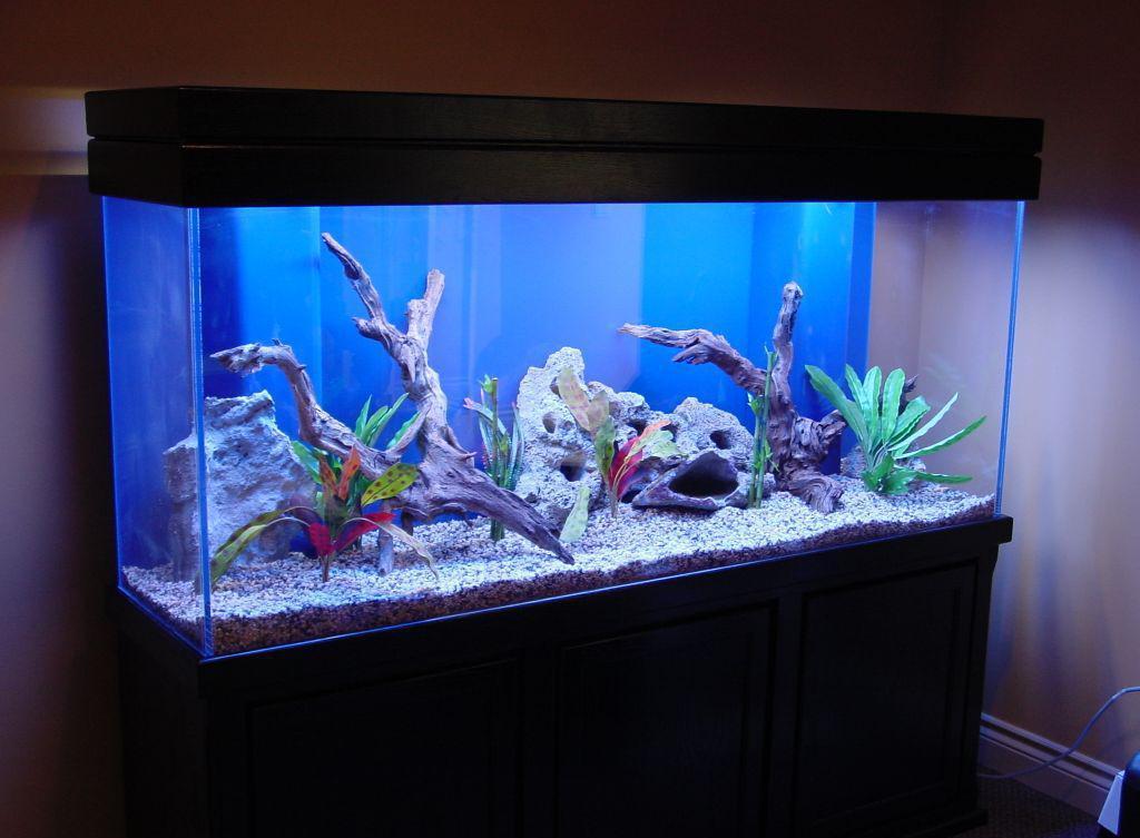 Декор для аквариума коряги