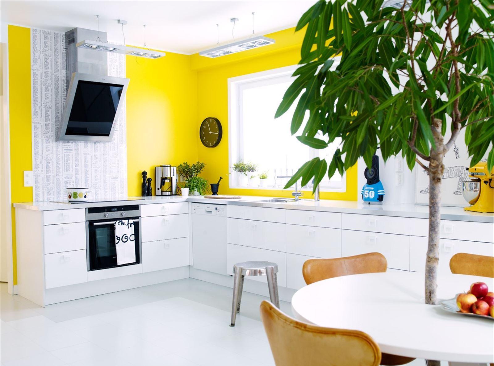 Бело-желтая кухня с живыми растениями