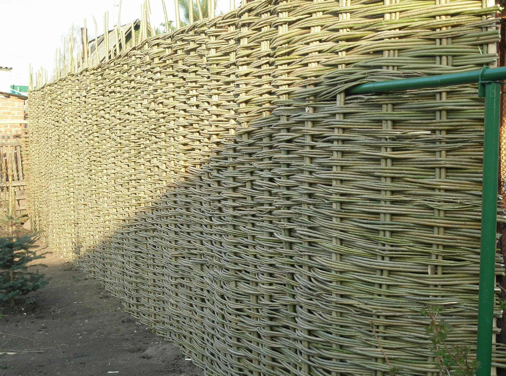 Высокий плетеный забор для дачи