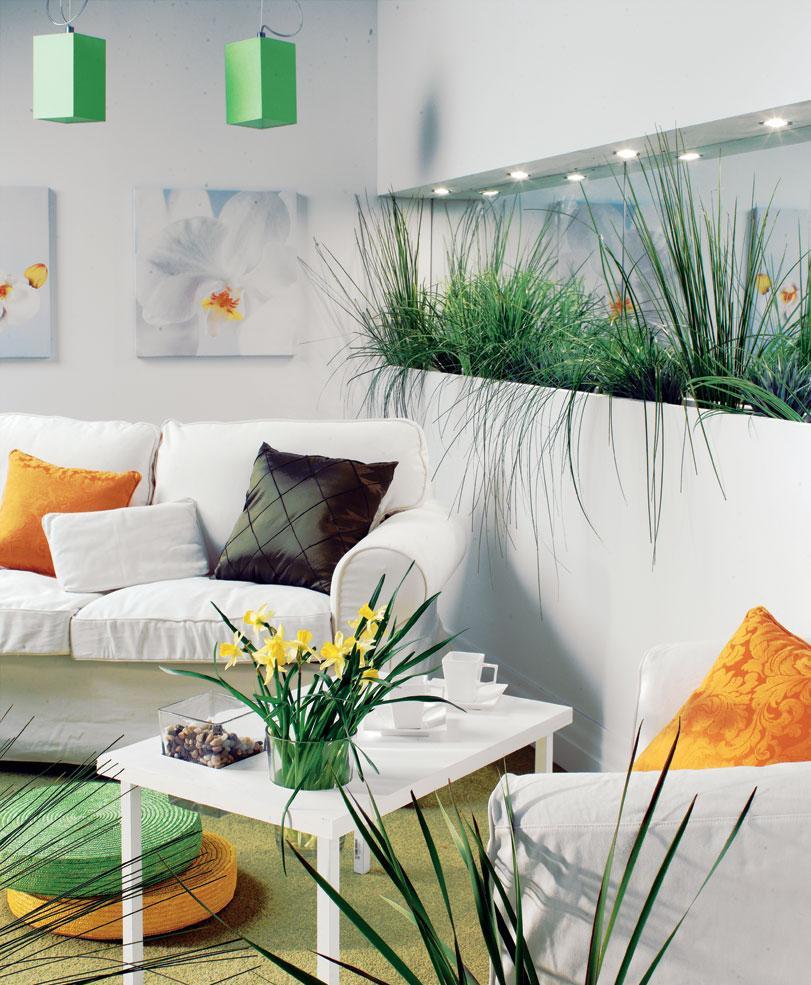 Трава в интерьере гостиной