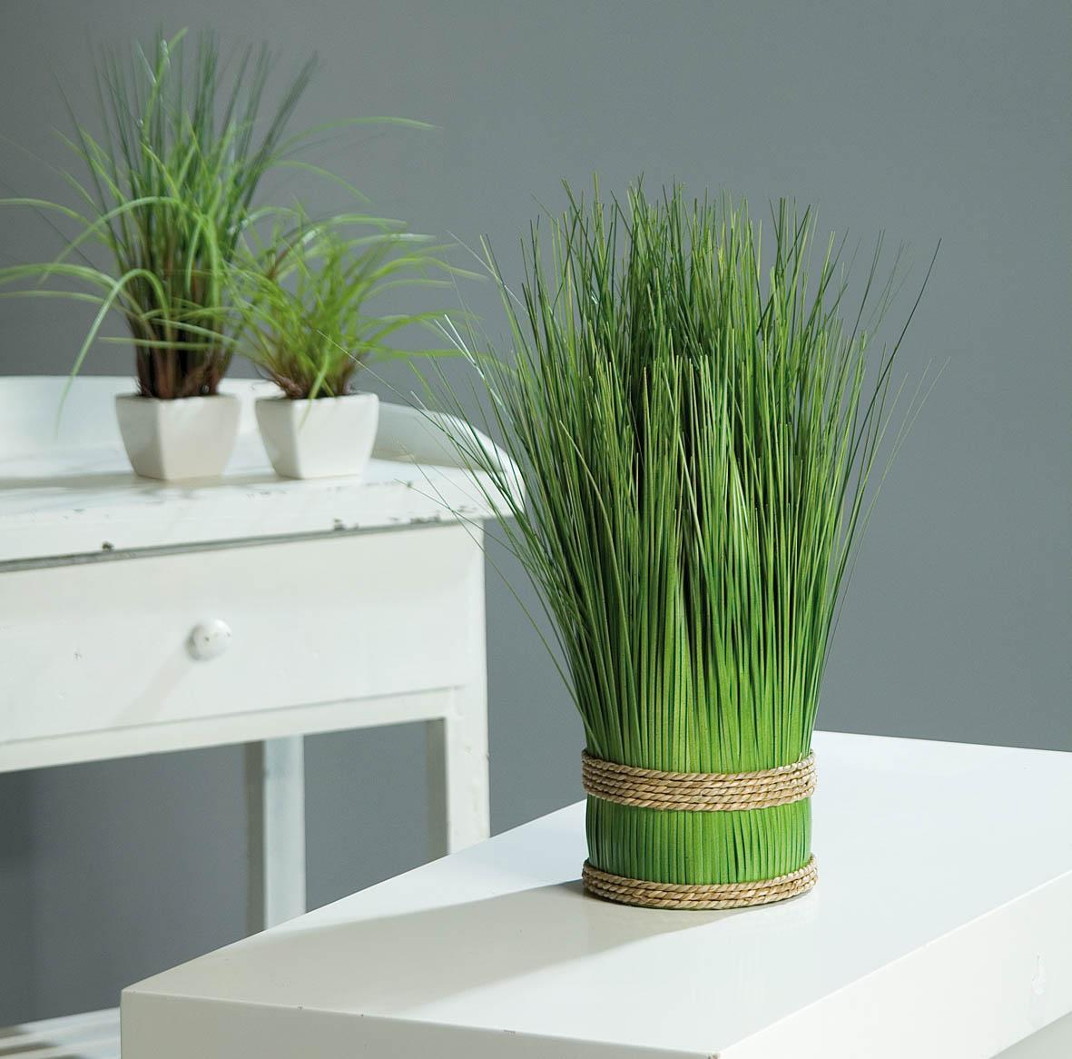 Трава в декоре дома