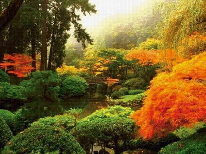 Лес и деревья по системе фэн-шуй