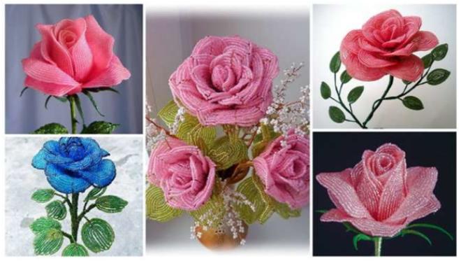 Розы – само воплощение женственности