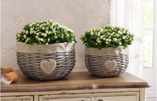 Плетеные горшки для комнатных цветов