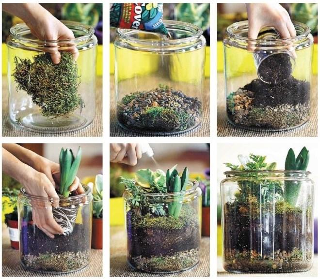 Стеклянные емкости для выращивания цветов