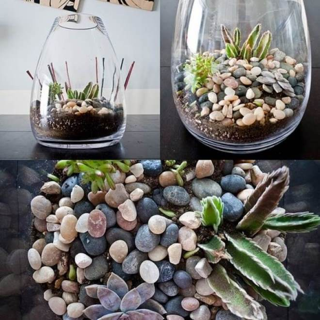 Камни для флорариума