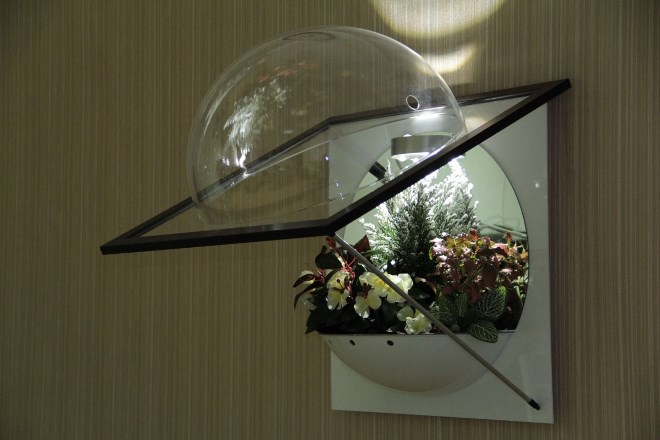 Настенные флорариумы
