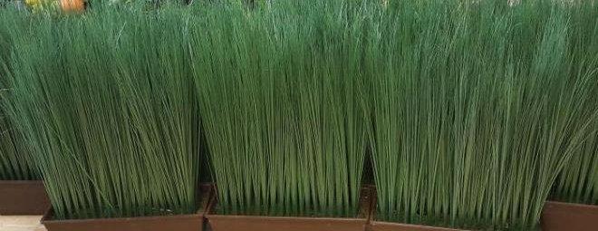 Искусственная трава в горшке